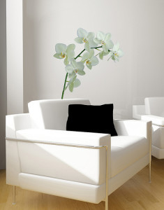 white chair with black pillow in a small area