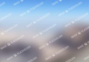 placeholder image 4